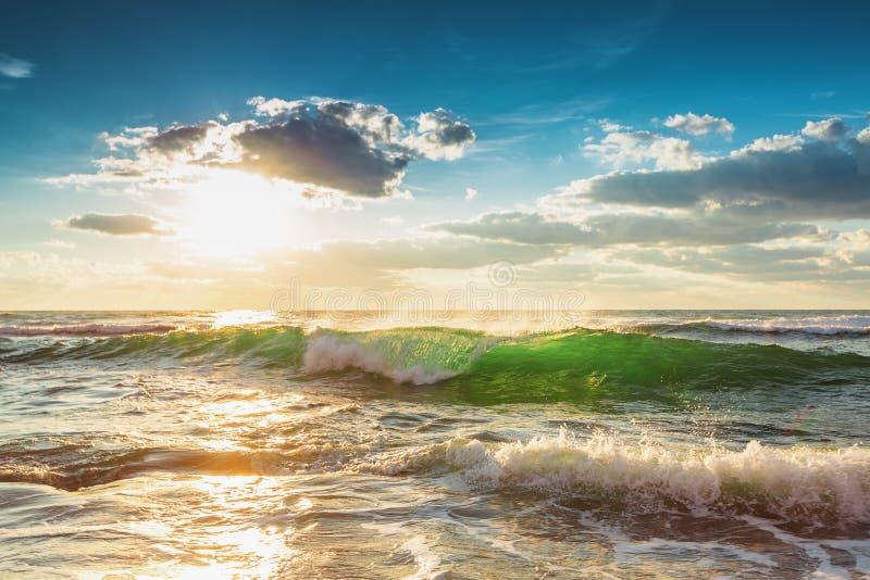 Belle vague verte de lever de soleil photographie stock libre de droits