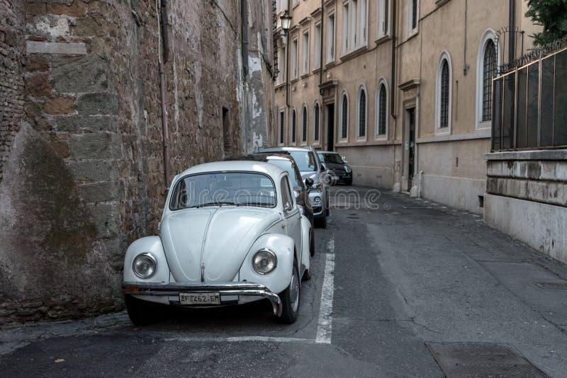 Belle vecchie finestre a Roma (Italia) 5 dicembre 2017: Vecchia via a Roma, Italia fotografia stock
