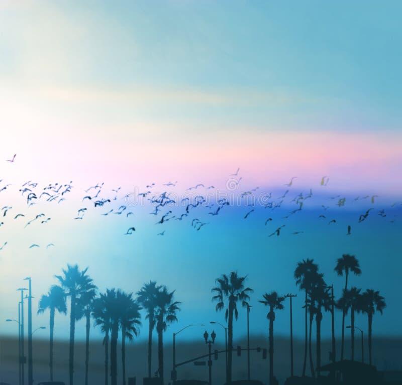 Belle vibrazioni di estate a Los Angeles immagine stock libera da diritti