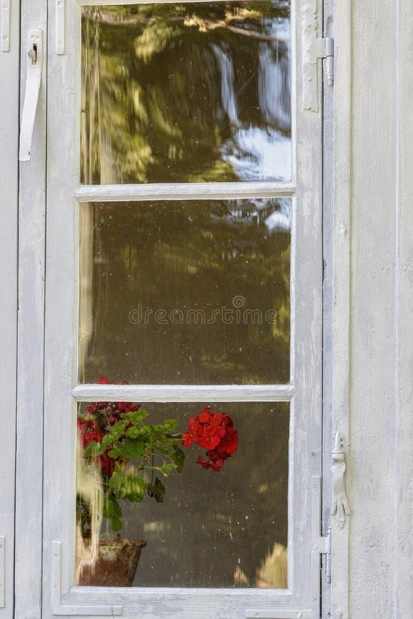 Belle vieille fenêtre complètement des jouets image libre de droits