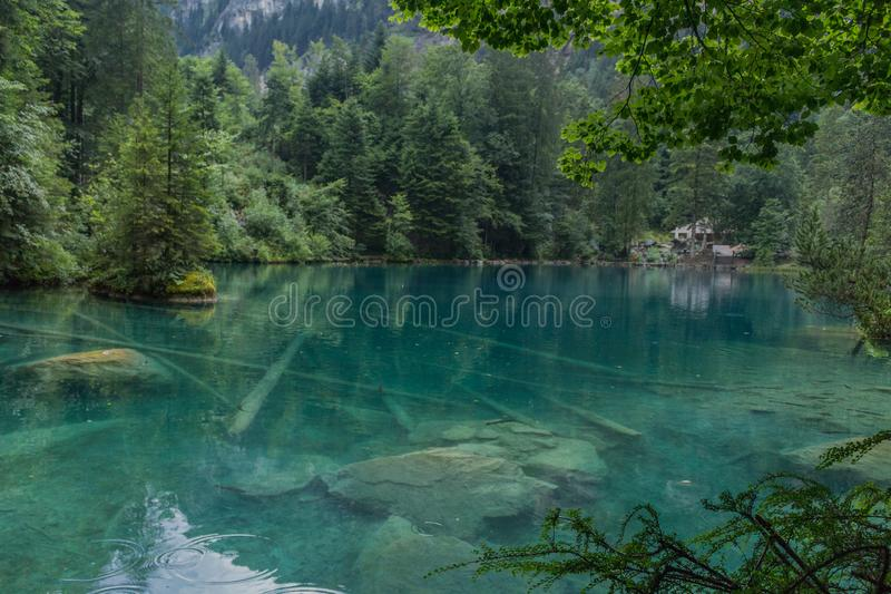 Belle visite d'exploration dans les montagnes suisses - Blausee/Suisse photo stock