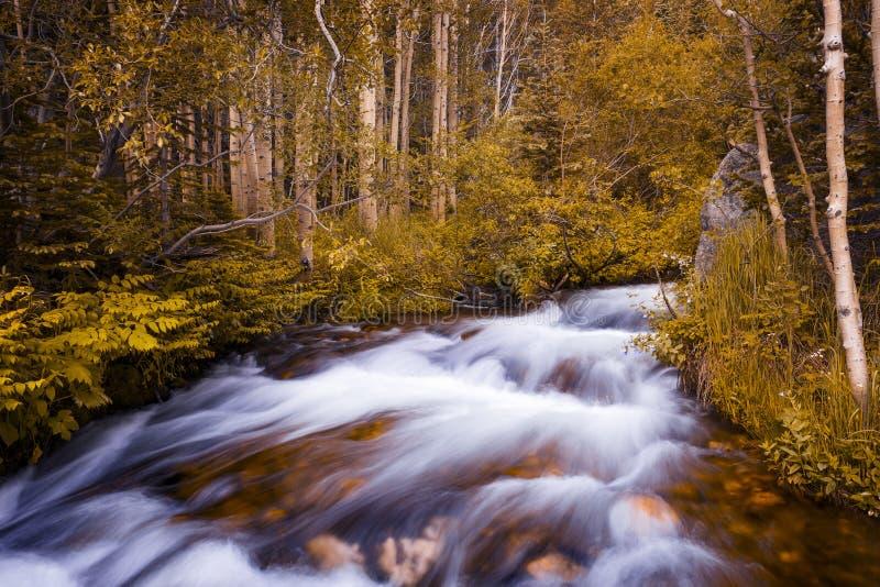 Belle vue d'un courant dans Rocky Mountains National Park, dans l'état du Colorado photos stock