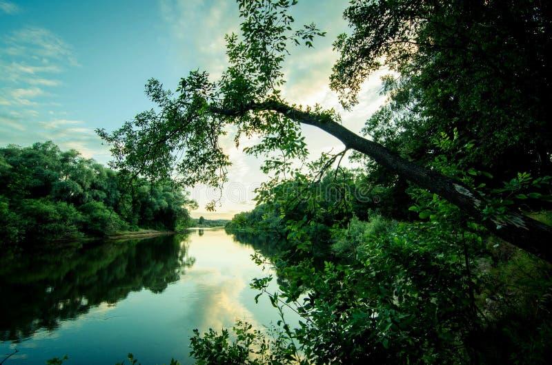 Belle vue dans le lac photos stock