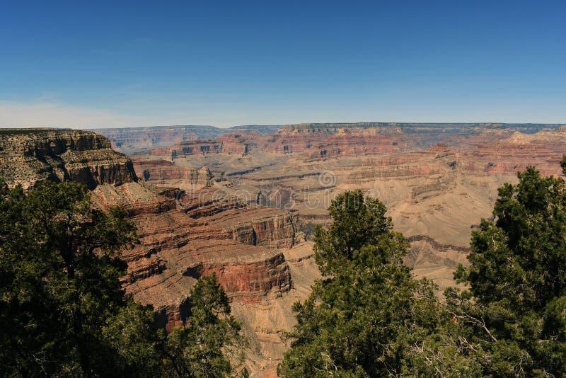 Belle vue de canyon grand et d'arbres images libres de droits