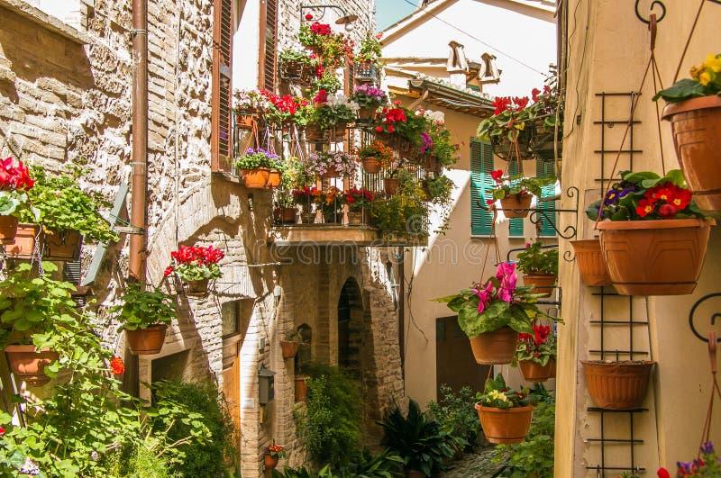 Belle vue de charmer les rues florales dans Spello photo libre de droits