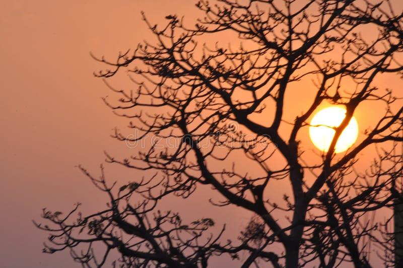 Belle vue de coucher du soleil d'extérieur photo libre de droits