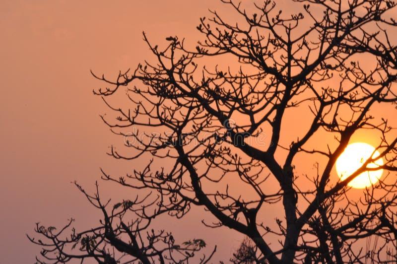 belle vue de coucher du soleil d'extérieur photographie stock libre de droits