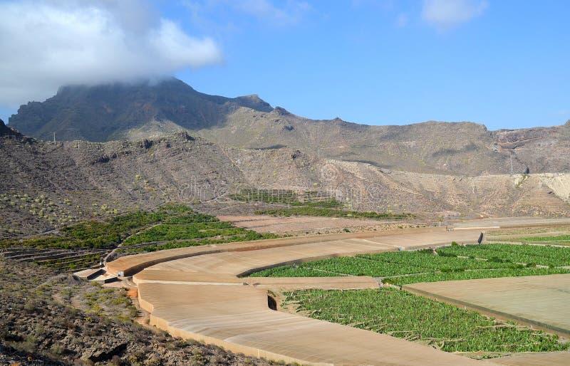 Belle vue de del volcanique Rey Natural Monument de caldeira dans Ténérife, Îles Canaries, Espagne Il est situé dans le munici du photo libre de droits