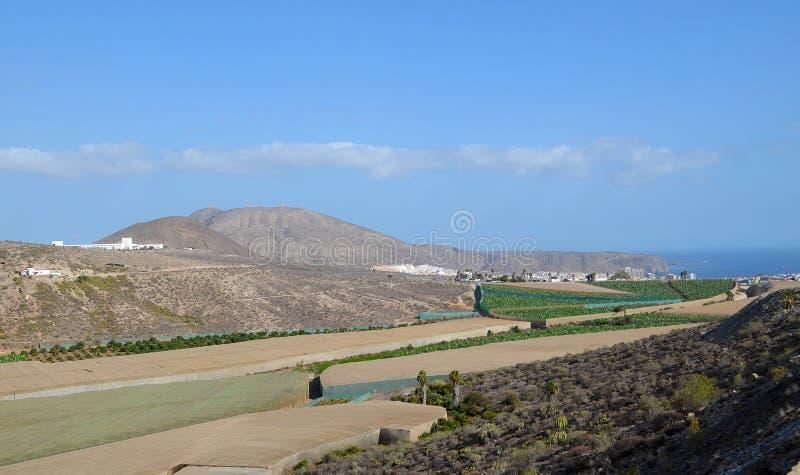 Belle vue de del volcanique Rey Natural Monument de caldeira dans Ténérife, Îles Canaries, Espagne Il est situé dans le munici du photos stock