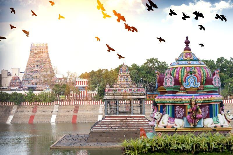 Belle vue de gopura coloré dans le Kapaleeshwarar indou Te image libre de droits