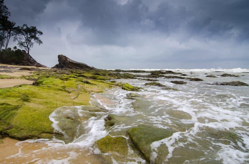 Belle vue de mer, vague frappant la roche couverte par la mousse verte vibrante photo stock
