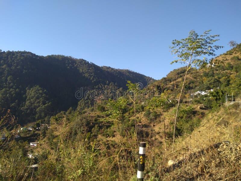 Belle vue de montagne de l'Himalaya avec les arbres forestiers verts dans l'uttarkashi au R-U en Inde photographie stock