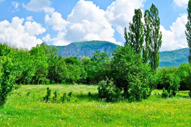 Belle vue de nature photographie stock libre de droits