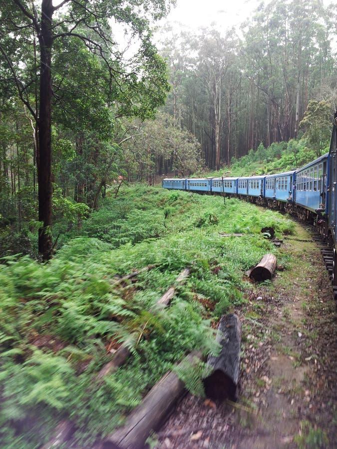 Belle vue de nature dans le train photographie stock libre de droits