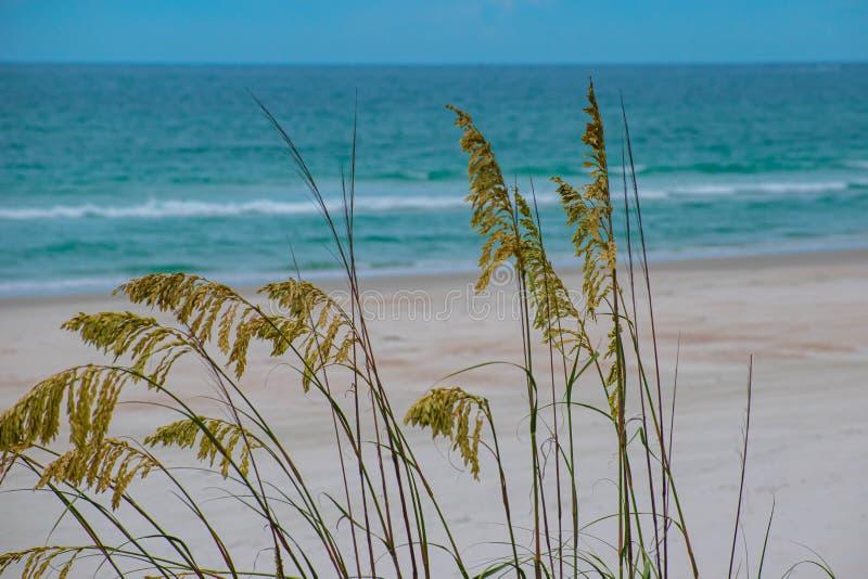 Belle vue de plage au secteur de phare photo stock