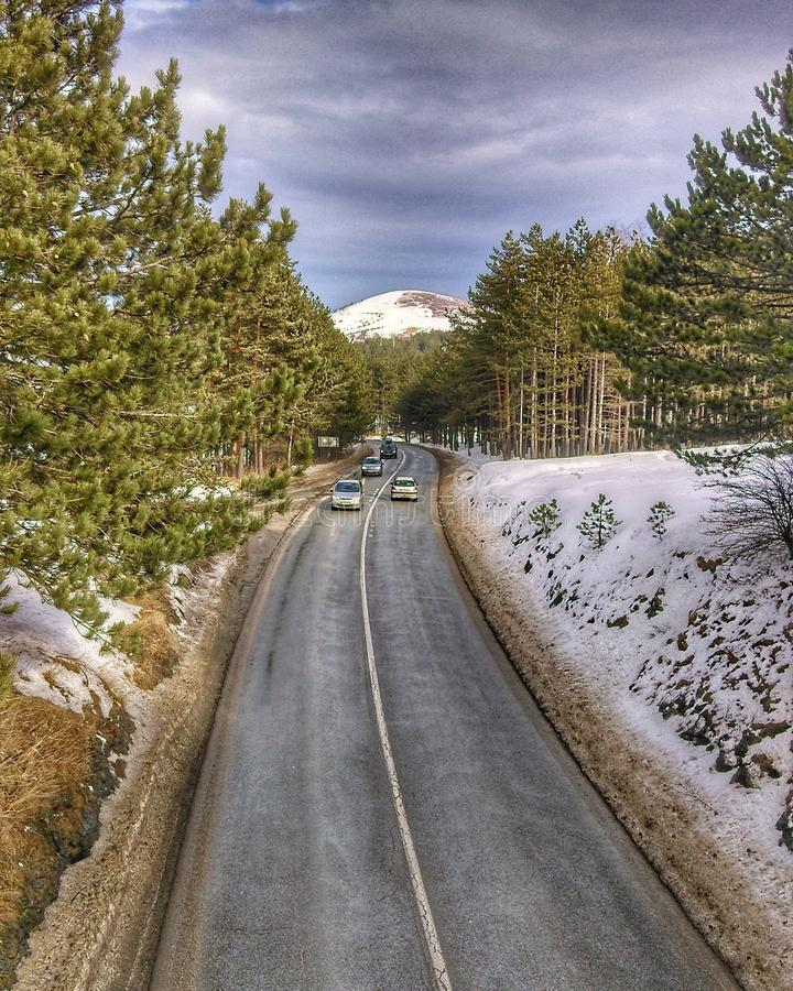 Belle vue de pont Photo serbe Montagne Zlatibor photo stock