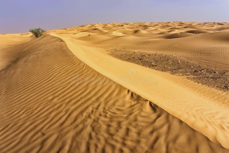 Belle vue de Sahara Desert en Tunisie photographie stock libre de droits