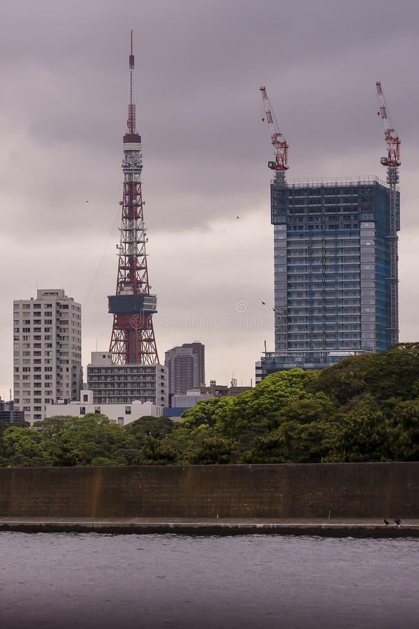 Belle vue de tour de Tokyo vue de la rivière de Sumida dans la lumière de coucher du soleil, Japon photographie stock libre de droits
