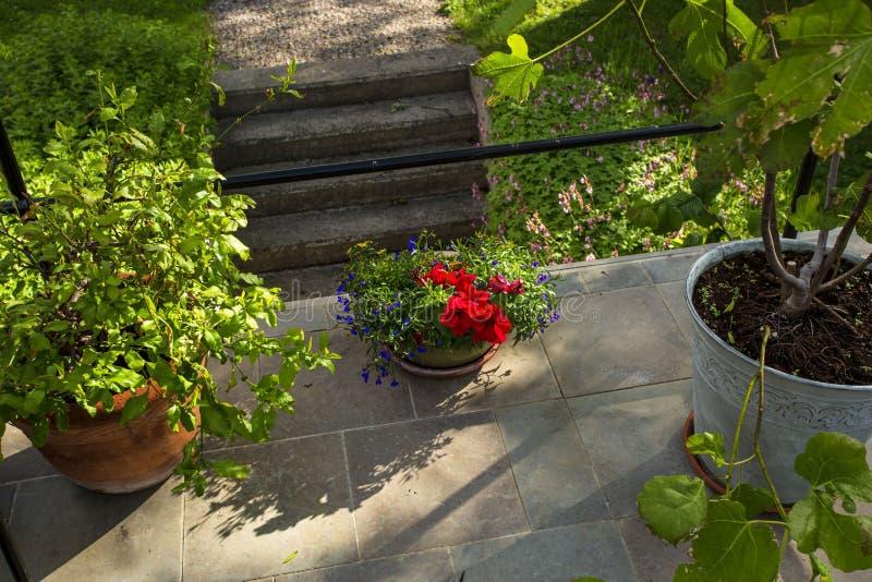 Belle vue des fleurs de pot en dehors de maison Éléments colorés de décoration pour l'extérieur photographie stock libre de droits