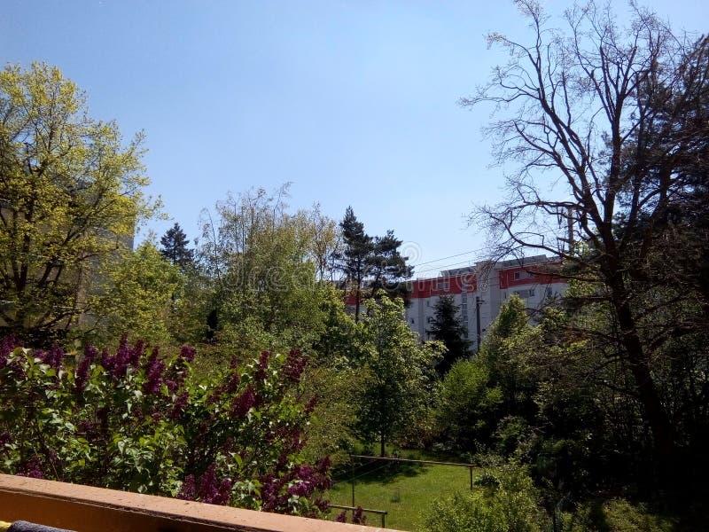 Belle vue du balcon en Allemagne en mai image libre de droits