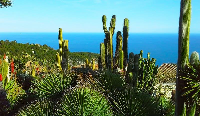 Belle vue du village d'Eze, un jardin botanique avec des cactus, aloès La Côte d'Azur méditerranéenne et image libre de droits