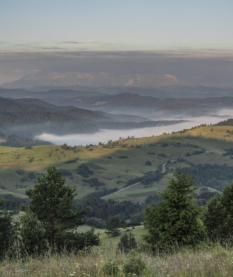 Belle vue en parc national de Pieniny image libre de droits