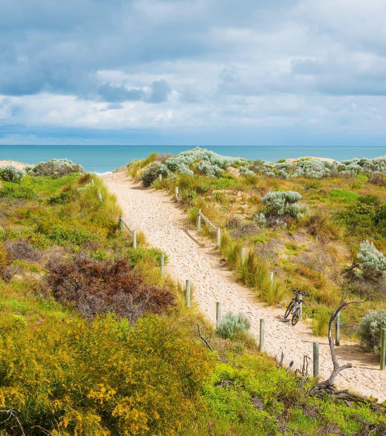Belle vue scénique des dunes photo libre de droits