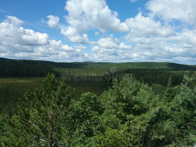 Belle vue sur la traînée de surveillance en parc d'algonquin images stock