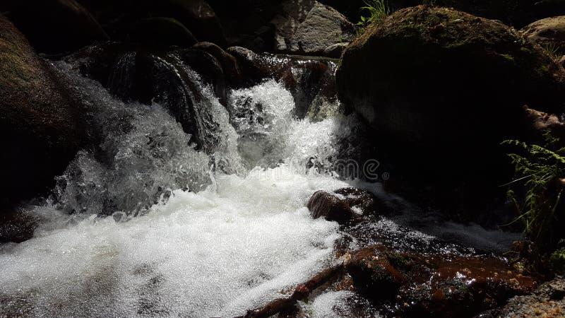 Bellenwater stock afbeeldingen