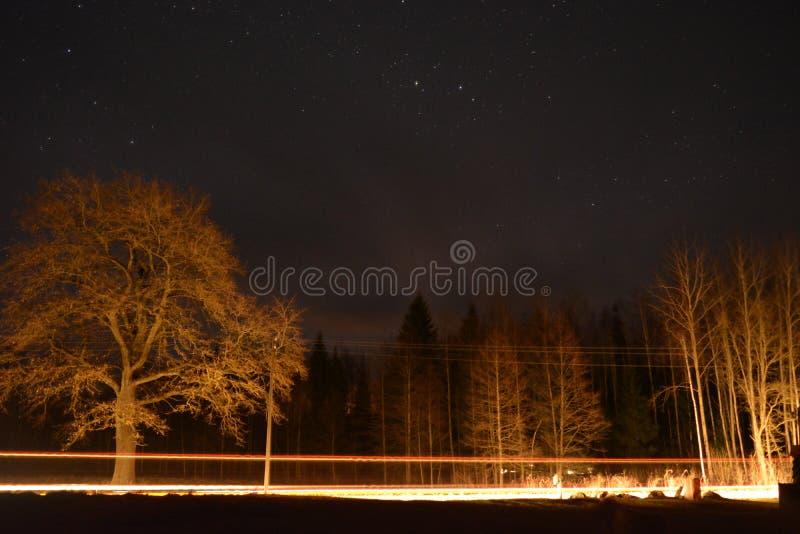 Belles étoiles images libres de droits