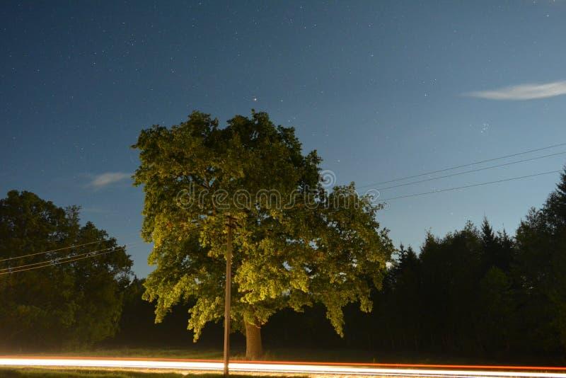 Belles étoiles image libre de droits