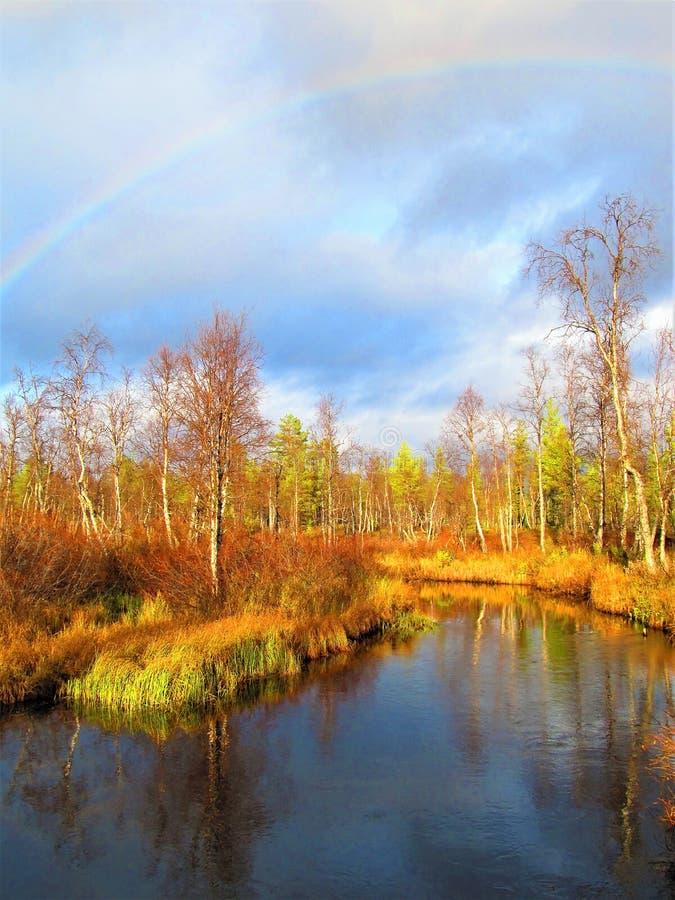 Belles couleurs d'automne en Finlande du nord Rivière, marais et arc-en-ciel images stock