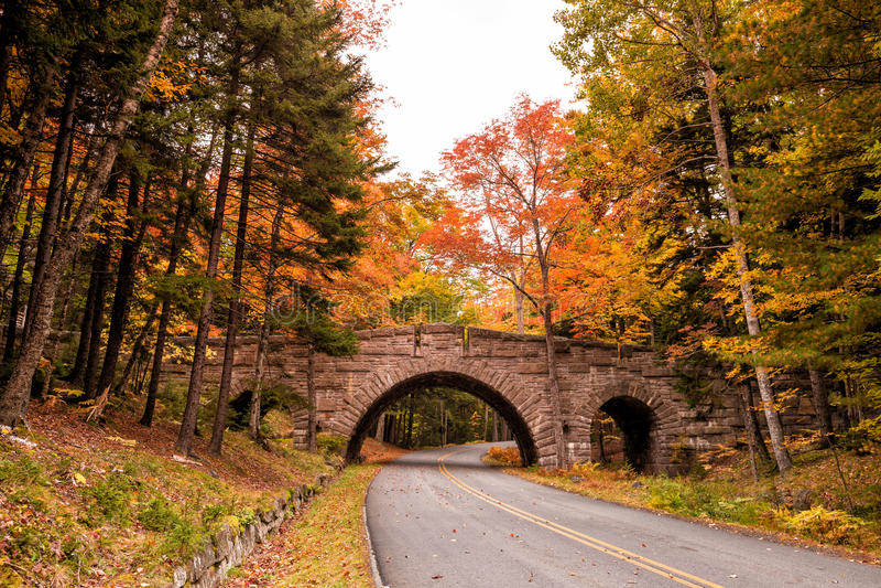 Belles couleurs de chute de parc national d'Acadia dans Maine image stock