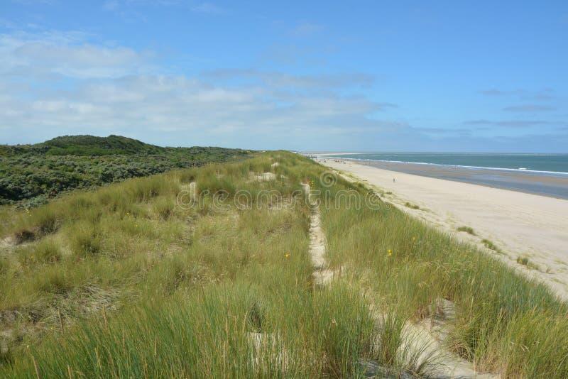 Download Belles dunes de sable image stock. Image du idyllique - 77152271