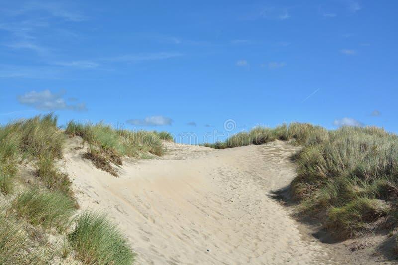 Download Belles dunes de sable photo stock. Image du province - 77153198