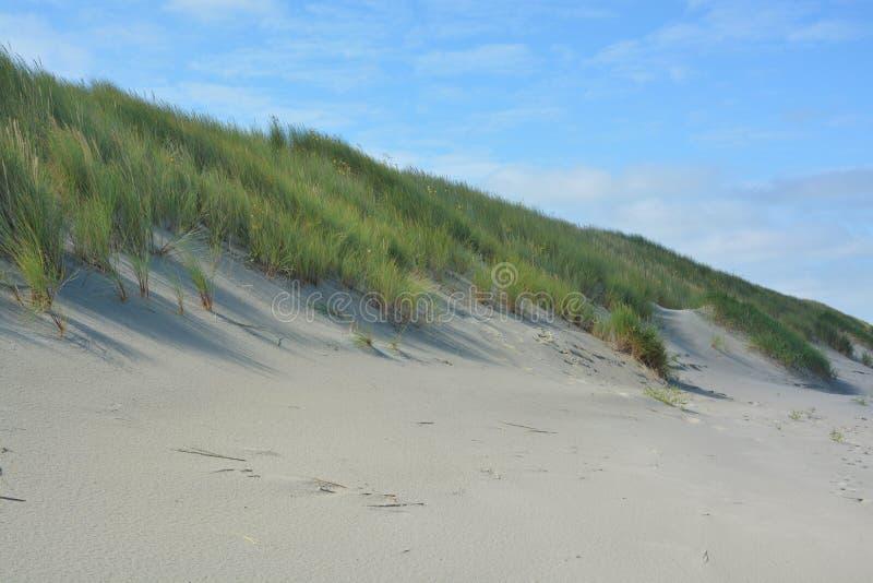 Download Belles dunes de sable image stock. Image du paysage, côte - 77153235