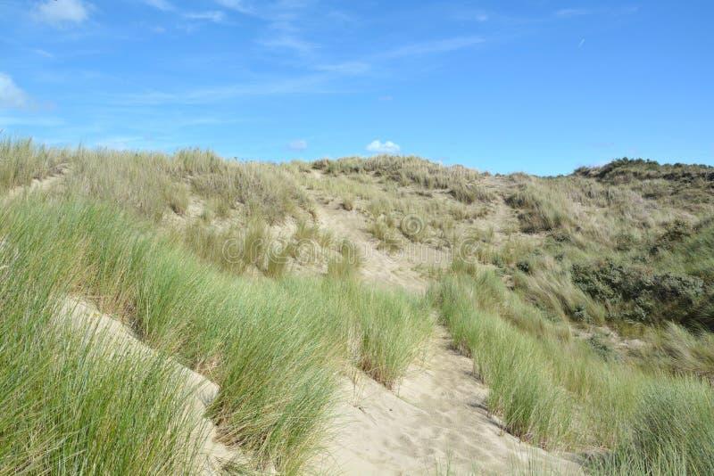 Download Belles dunes de sable image stock. Image du côte, tourisme - 77154063