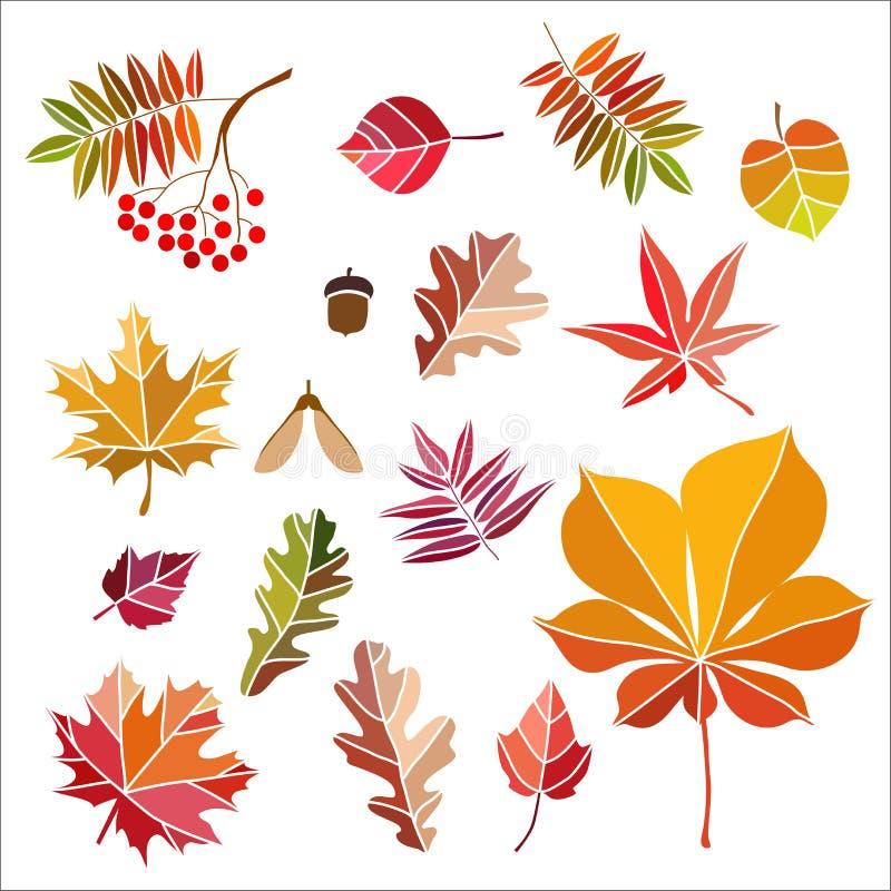 Belles feuilles d'automne colorées d'isolement illustration libre de droits