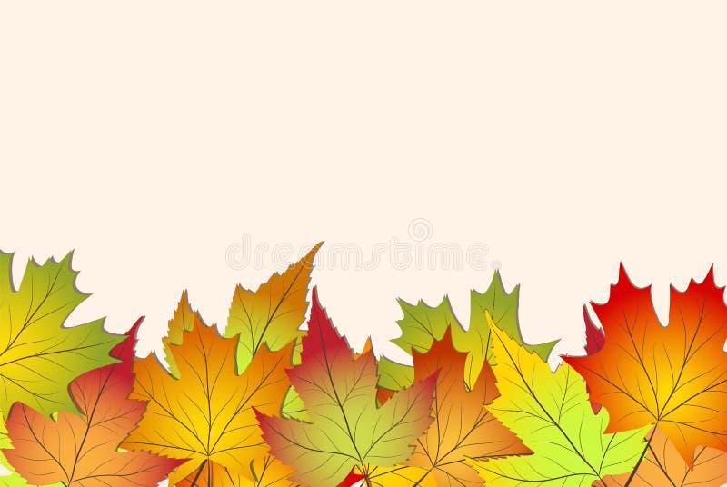 Belles feuilles d'automne colorées, de nouveau au vecteur i d'actions d'école illustration de vecteur