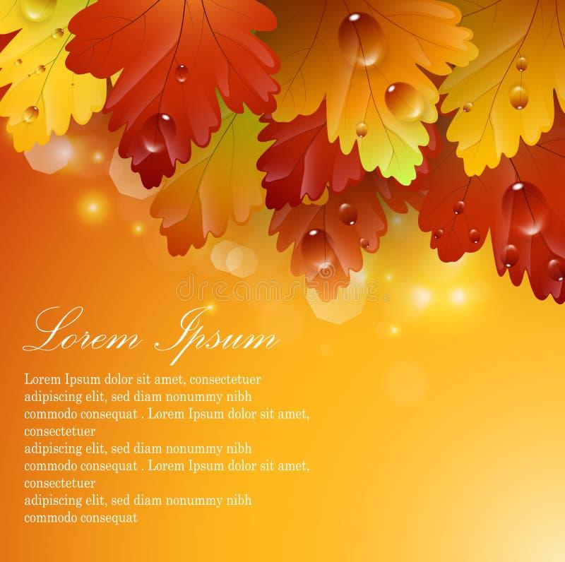 Belles feuilles lumineuses avec les milieux abstraits automnaux illustration stock