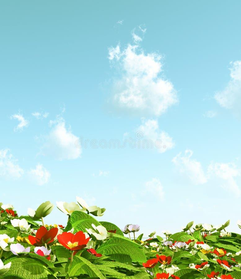 belles fleurs illustration stock