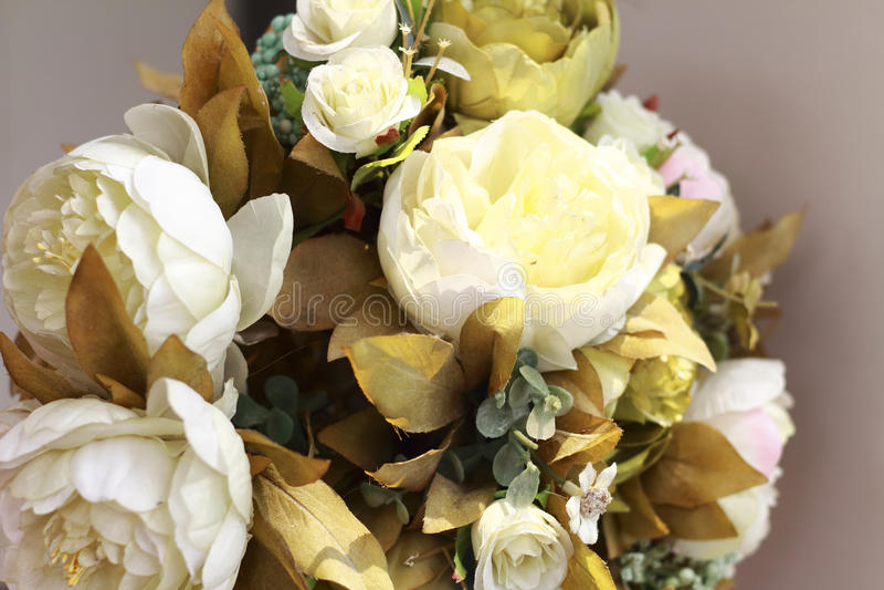Belles fleurs blanches photo stock