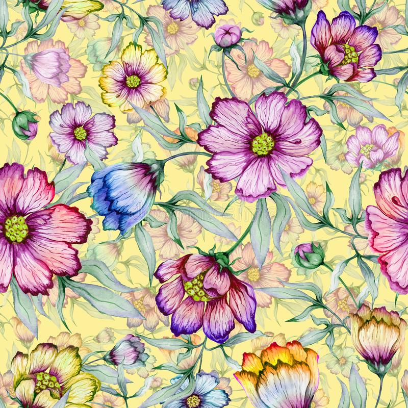 Belles fleurs colorées de cosmos avec des feuilles sur le fond jaune Configuration florale sans joint Peinture d'aquarelle illustration stock