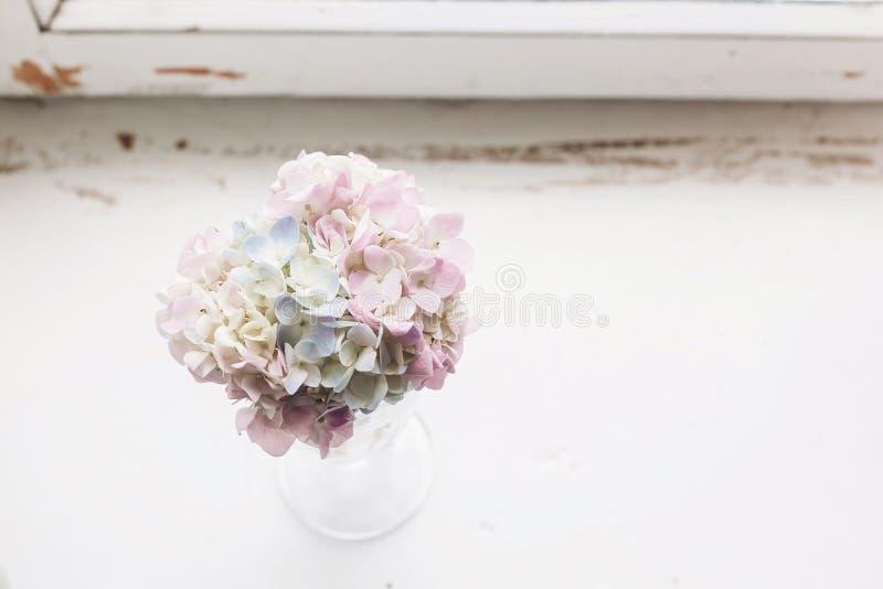 Belles fleurs d'hortensia en verre de cru avec de l'eau sur le bois blanc rustique du vieux rebord de fenêtre De campagne toujour photo libre de droits