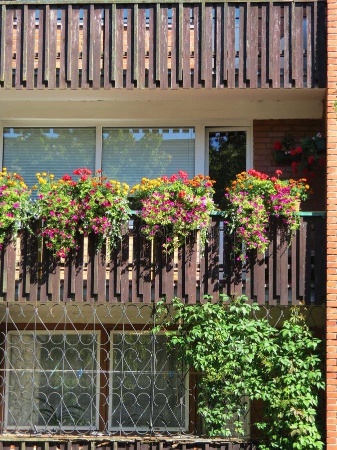 Belles fleurs dans le balcon à la maison, Lithuanie photo stock