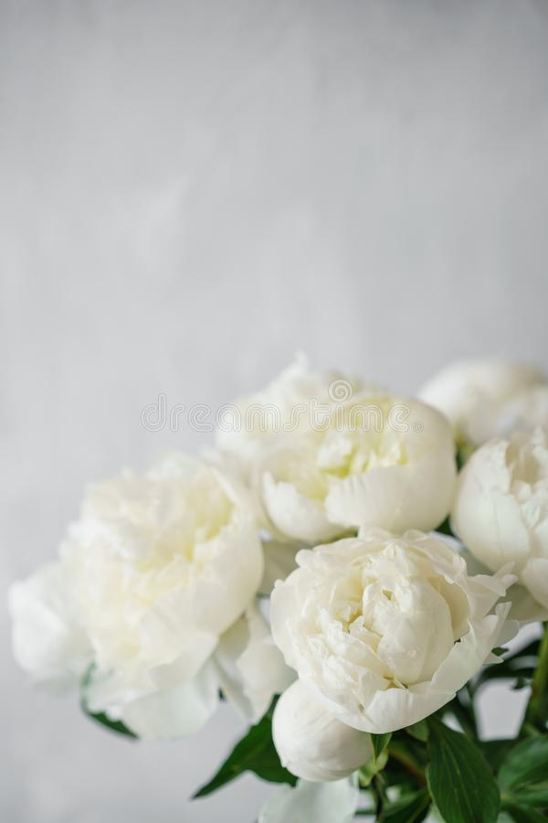 Belles fleurs dans le vase en verre Beau bouquet des pivoines blanches Composition florale, scène, lumière du jour wallpaper photographie stock
