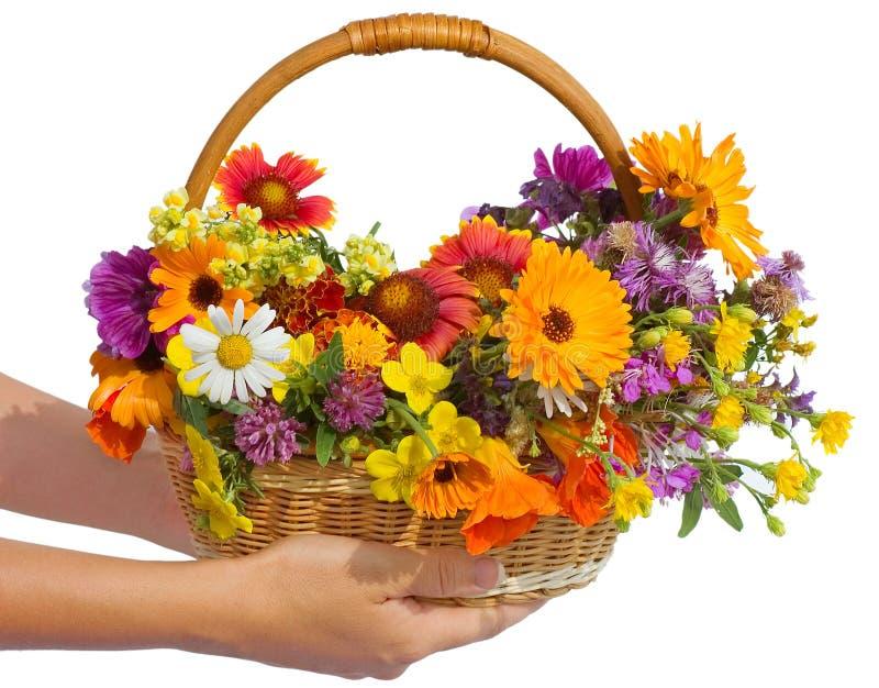 Belles fleurs dans un panier images libres de droits
