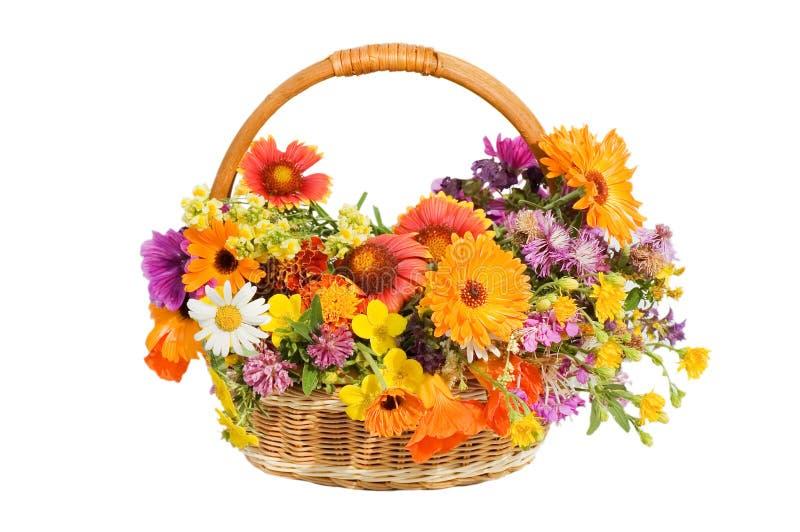 Belles fleurs dans un panier d'isolement sur le blanc image libre de droits