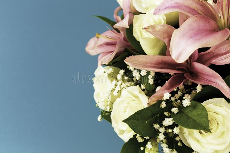 Belles fleurs de plan rapproché dans des couleurs en pastel sur un fond bleu dans le traitement de cru Carte de voeux, le jour de photographie stock libre de droits