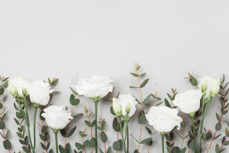 Belles fleurs et feuilles en pastel d'eucalyptus sur la vue supérieure grise de table Cadre floral rose style plat de configurati photographie stock libre de droits